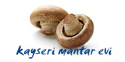 Kayseri Mantar Evi